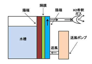 Hydrogen gas supply apparatus for living body (gaseous molecular hydrogen inhalation)