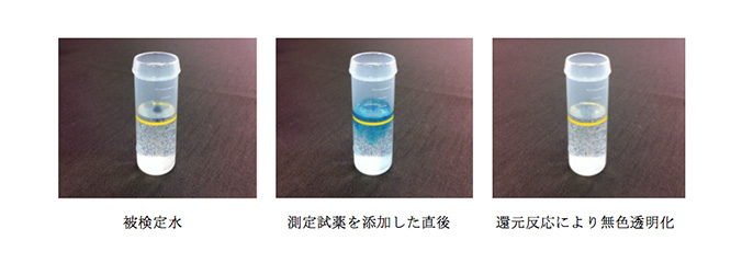 Dissolved hydrogen concentration measuring reagent